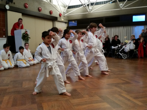 Karate_Weihnachtsfeier_2015_17
